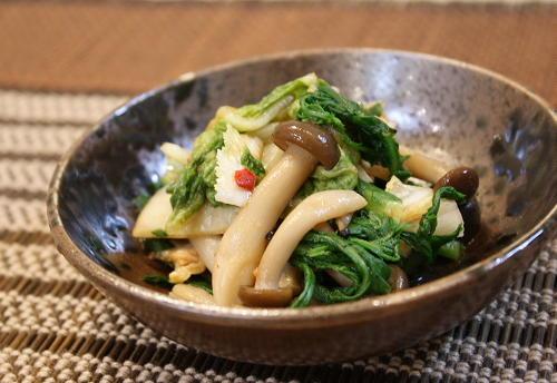今日のキムチ料理レシピ:春菊としめじのキムチ和え
