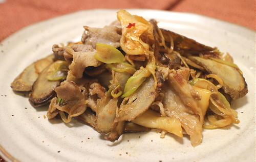 今日のキムチレシピ:豚肉とごぼうのキムチ炒め