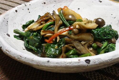 今日のキムチ料理レシピ:ほうれん草ときのことキムチのオイスターソース炒め