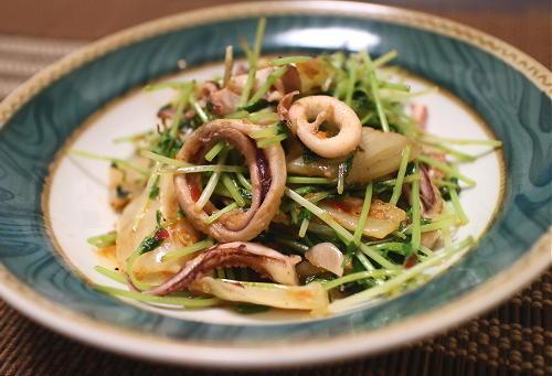 今日のキムチ料理レシピ:いかと豆苗のキムチ炒め
