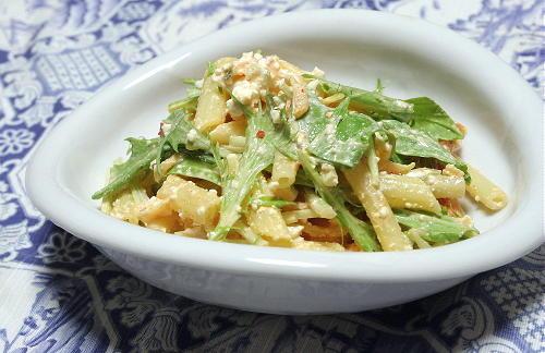 今日のキムチ料理レシピ:カッテージチーズとキムチのマカロニサラダ