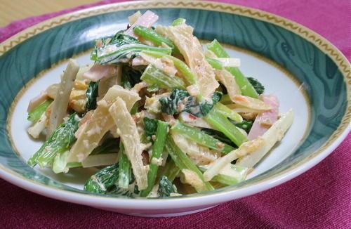 今日のキムチ料理レシピ:ごぼうと小松菜のキムチサラダ