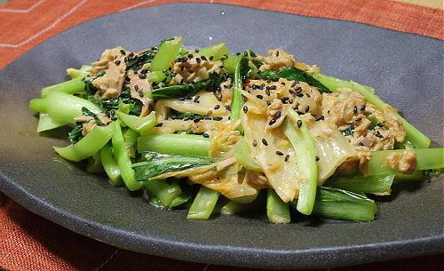 今日のキムチレシピ:小松菜とキムチのツナ炒め