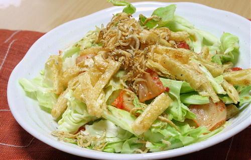 今日のキムチ料理レシピ:キャベツとキムチのバリバリサラダ