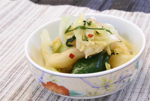 今日のキムチ料理レシピ:キャベツと胡瓜ピリ辛浅漬け