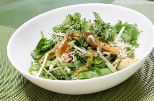 今日のキムチ料理レシピ:水菜としらすとキムチの簡単サラダ