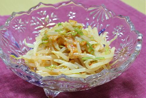 今日のキムチ料理レシピ:もやしのピリ辛蜂蜜味噌和え