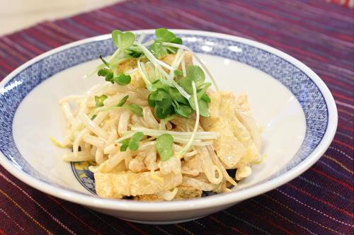 今日のキムチ料理レシピ:モヤシとキムチのマヨネーズサラダ