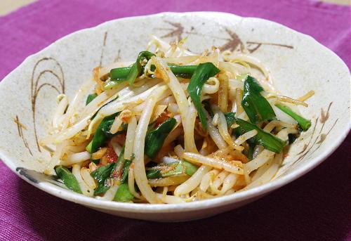 今日のキムチ料理レシピ:ピリ辛にらもやし