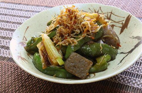今日のキムチ料理レシピ:ピーマンとこんにゃくのピリ辛煮