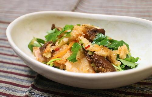 今日のキムチ料理レシピ:鮭のキムチおろし和え