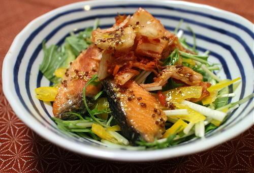 今日のキムチ料理レシピ:水菜と鮭のキムチサラダ