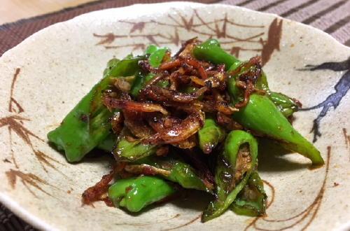 今日のキムチ料理レシピ:しし唐のピリ辛炒め