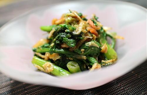 今日のキムチレシピ:春菊とキムチの和え物