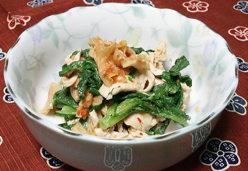 今日のキムチ料理レシピ:鶏肉と春菊のキムマヨ和え