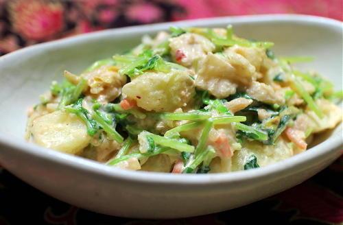 今日のキムチ料理レシピ:豆苗とキムチのポテトサラダ