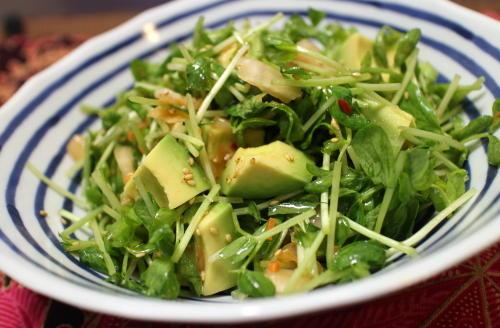 今日のキムチレシピ:アボカドと豆苗のキムチ和え