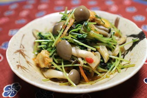 今日のキムチ料理レシピ:豆苗としめじのピリ辛煮びたし